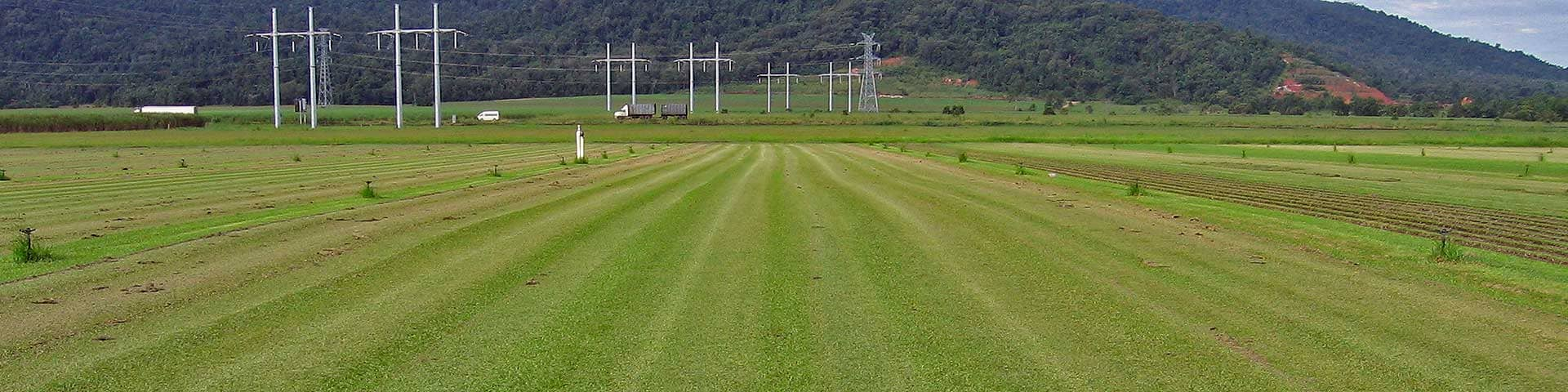 Blenners Turf (Tully)